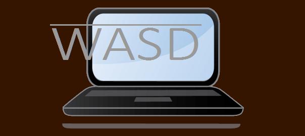 WASD title image